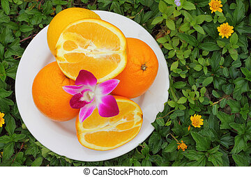 Orange placed on green leaves