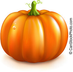 Orange Pumpkin, Isolated On White Background, Vector...