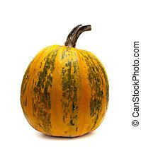 Orange Pumpkin isolated on white background