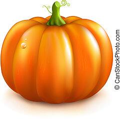 Orange Pumpkin, Isolated On White Background, Vector Illustration