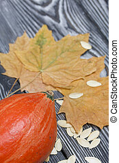 Orange pumpkin, seeds and dried maple leaves. On brushed pine boards painted black and white.