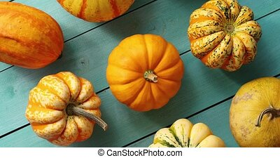 Orange pumpkins laid in lines - From above view of ripe...