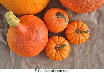 Orange pumpkins on paper background