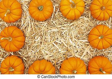 Orange pumpkins on straw hay background