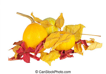 orange pumpkins with dry leaves, isolated on white background
