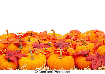 Orange pumpkins with fall leaves on straw hay background isolated over white