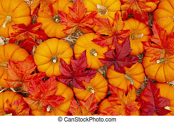 Orange pumpkins with fall leaves on straw hay background