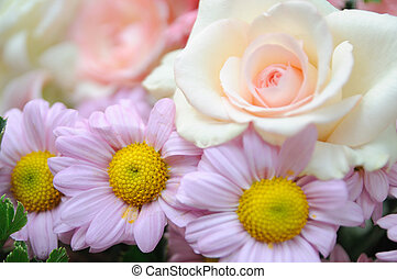 Orange rose with beautiful flowers