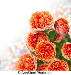 orange roses bouquet with free space for text