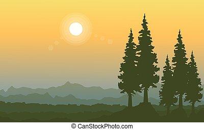 Orange sky landscape with spruce on the hill