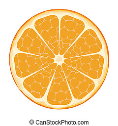 Orange Slice Vector Art