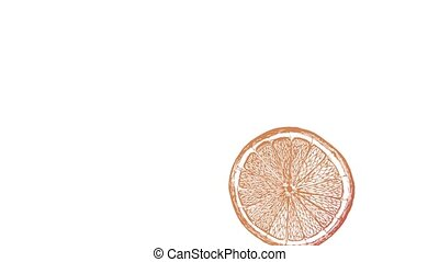 orange slices rotate on a white background, looped rotation