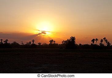 orange, sonnenuntergang, afrikas, schöne