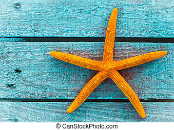 Orange starfish or sea star on blue wooden boards