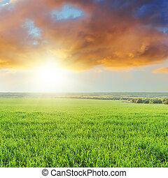 orange sunset in clouds over green grass field