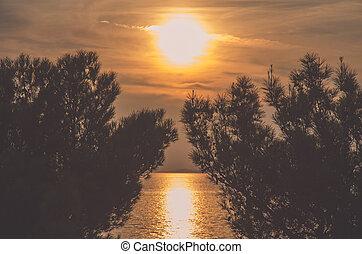 orange sunset over sea horizon