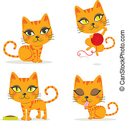 Cute orange tabby cat playing and doing other activities