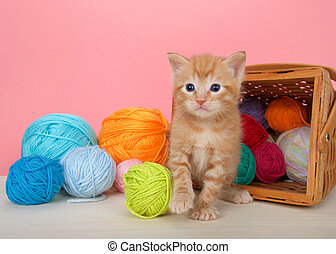 orange tabby kitten with balls of yarn spilling from basket