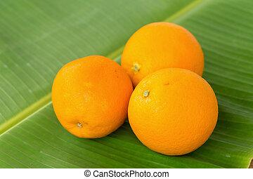 orange, table bois