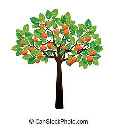 Orange Tree and Fruits. Vector Illustration.