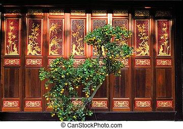 Orange tree in front of wooden door, Buddhist temple, Saigon, Vietnam