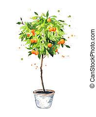 Orange tree Illustrations and Stock Art. 60,299 Orange ...