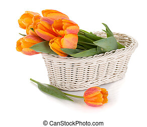 orange, tulipes, fleurs