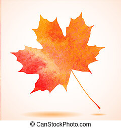 Orange watercolor painted vector autumn maple leaf...