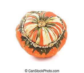 Orange, white and green Turks Turban squash, isolated on a...