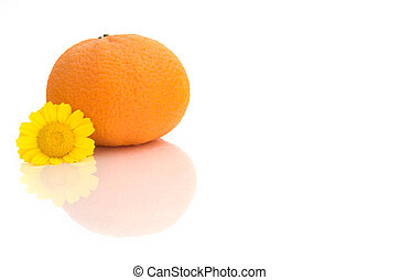 Orange with a flower and reflections