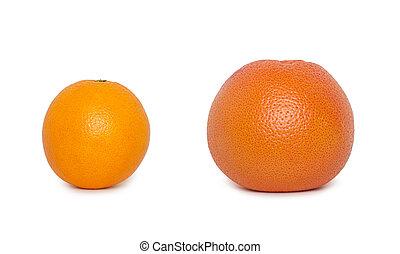 orange with grapefruit isolated