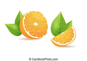 Orange with Leaves Cartoon Isolated Illustration