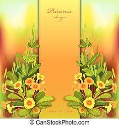 Orange yellow primroses - Spring summer flowers. Floral ...
