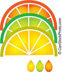 orange, zitrone, limette, pampelmuse, scheiben