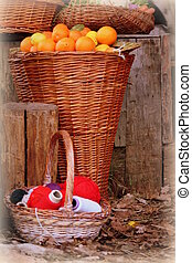 oranges and balls of wool