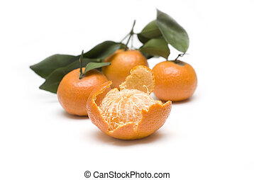 oranges in white backgrounds