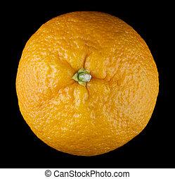 oranges on a black background