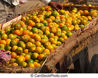 oranges selling on the street of new delhi