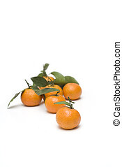 oranges with leaves backgrounds