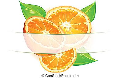 Orange fruits with leaves on white background, vector illustration