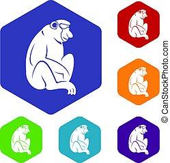 Orangutan icons set hexagon