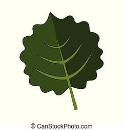 Orbicular Floral Leaves Vector Illustration Graphic Design