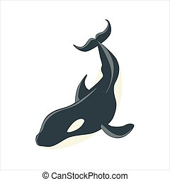 Orca Black And White Arctic Killer Whale, Realistic Aquatic Mammal Vector Drawing