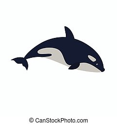 orca - killer whale vector illustration.