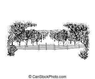 Orchard - Landscape with orchard, vector illustration