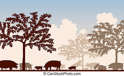 Orchard pigs - Editable vector illustration of free-range...