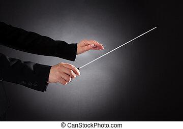 orchestra, femmina, conduttore, bacchetta