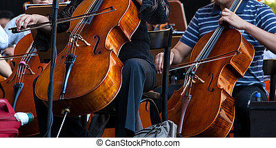 Orchestra - View of the Orchestra in concert - Cello musical...