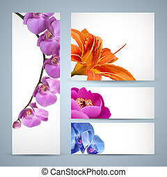 orchidée, pivoine, fleur, fleurs, vecteur, lis