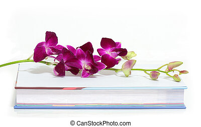 Orchid and book